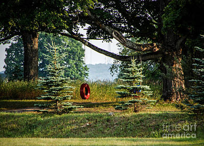 Photograph - Tire Swing by Grace Grogan