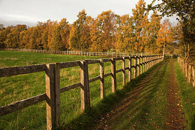 Laneway Photograph - Tire Tracks Along A Fence In A Rural by John Short