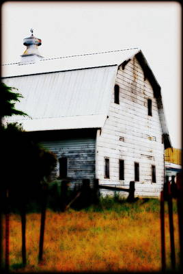 Digital Art - Tired Old Barn II by Kathy Sampson