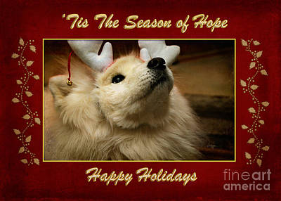 'tis The Season Of Hope Happy Holidays Art Print by Lois Bryan