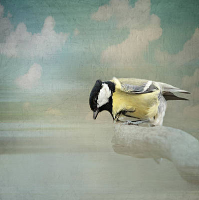 Winter Fun Mixed Media - Tit In The Storm by Heike Hultsch