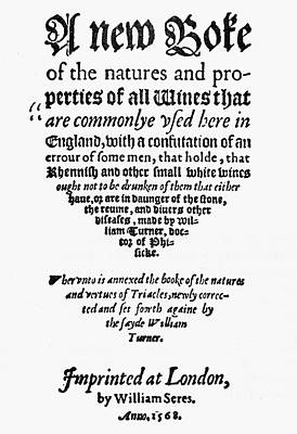 Winemaking Painting - Title Page Wine Book, 1568 by Granger