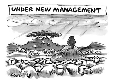 Sheep Drawing - Title: Under New Management.  A Cat Overlooks by Lee Lorenz