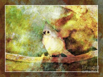 Photograph - Titmouse - Digital Paint 3 by Debbie Portwood