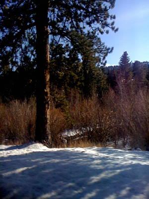 Photograph - To Estes Park by Gina Bonelli