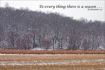 Photograph - To Every Thing There Is A Season by Nikolyn McDonald