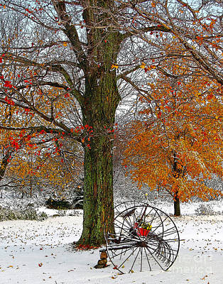 Drawing - To Everything There Is A Season... by Diane E Berry