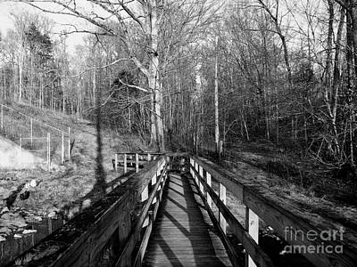 Photograph - To Get To The Other Side by Jaclyn Hughes Fine Art