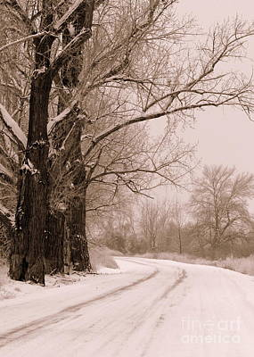 Snowy Roads Photograph - To Grandma's House by Carol Groenen