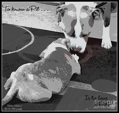 To Know Digital Art - To Know A Pit Is To Love by Bobbee Rickard