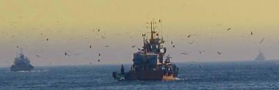 Photograph - To The Fishing Grounds by Ian  MacDonald