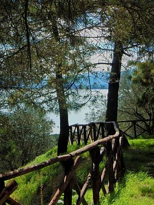 Photograph - To The Lake by Dorothy Berry-Lound