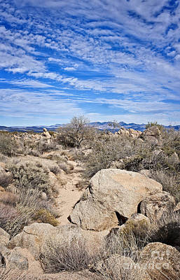 Photograph - To The Sonoran Sky And Back by Lee Craig