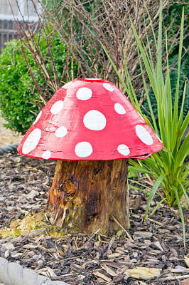 Garden Ornament Photograph - Toadstool by Tom Gowanlock