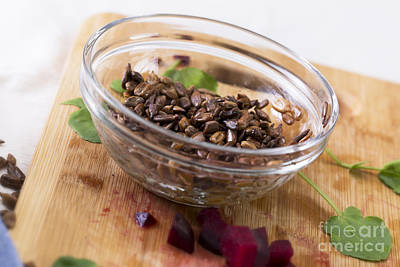 Watercress Photograph - Toasted Sunflower Seeds by Charlotte Lake