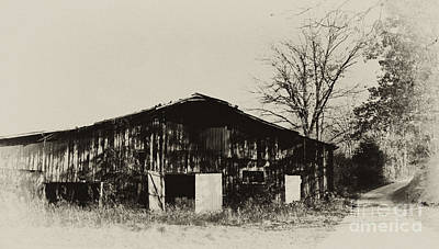 Photograph - Tobacco Barn And Country Road by Wilma  Birdwell