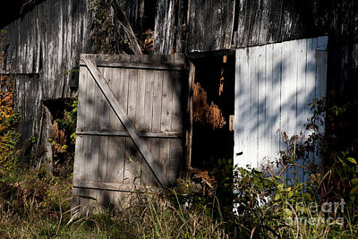 Photograph - Tobacco Barn Doors  by Wilma  Birdwell