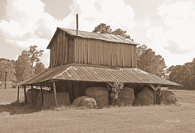 Photograph - Tobacco Barn In Sepia by Suzanne Gaff
