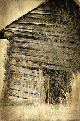 Photograph - Tobacco Barn by Sue McGlothlin