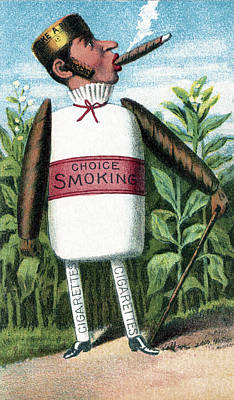 1880s Photograph - Tobacco, Bufford Vegetable Card, 1887 by Science Source