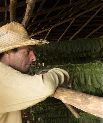 Photograph - Tobacco Farmer by Ann Tracy
