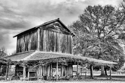 Photograph - Tobacco Road Bw by JC Findley