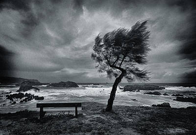 Benches Photograph - Today No One by Mikel Lastra