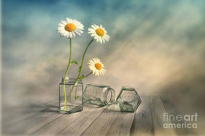 Daisies Digital Art - Together 2 by Veikko Suikkanen