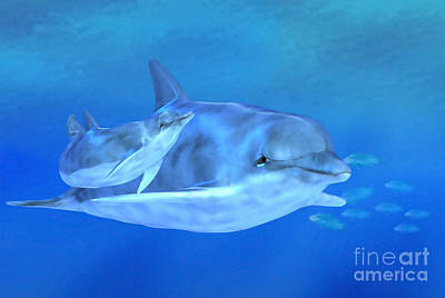 Dolphin Digital Art - Togetherness by John Edwards