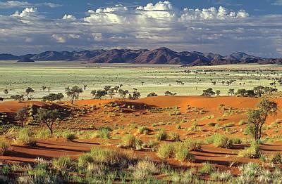 Dunes Wall Art - Photograph - Tok Tokkie Desert by Marc Pelissier