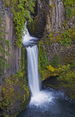 Photograph - Toketee Falls by Loree Johnson