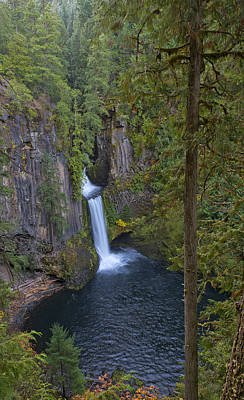 Oregon Photograph - Toketee Falls View by Loree Johnson