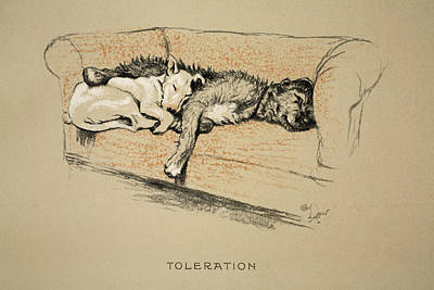 Bull Drawing - Toleration, 1930, 1st Edition by Cecil Charles Windsor Aldin