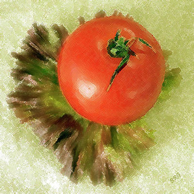 Photograph - Tomato And Lettuce by Ben and Raisa Gertsberg