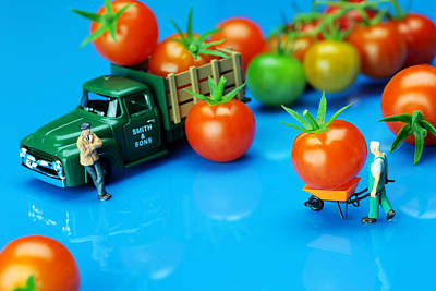 Whimsy Photograph - Tomato Business Little People On Food by Paul Ge