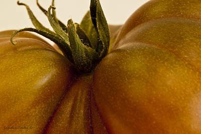 Tomato Macro Art Print by Sandra Foster