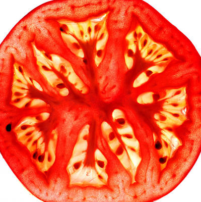 Photograph - Tomato Slice by Paul Ge