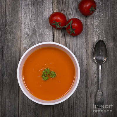 Tomato Soup Vintage Art Print by Jane Rix