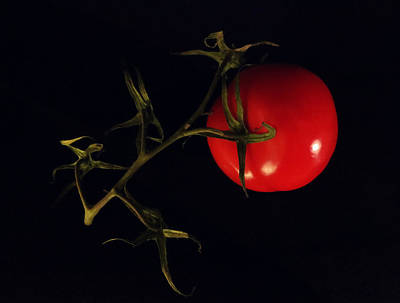 Photograph - Tomato With Stem by Patricia Januszkiewicz
