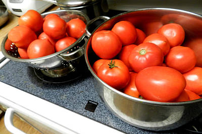 Photograph - Tomatoes Aplenty by Grace Dillon