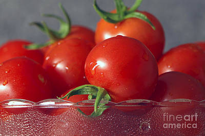 Photograph - Tomatoes In A Bowl by Sharon Talson