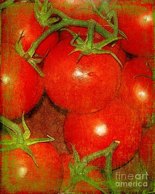 Photograph - Tomatoes On The Vine by Judi Bagwell