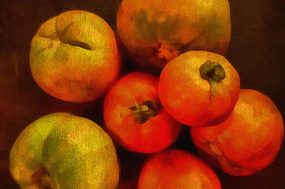 Digital Art - Tomatoes Still Life by Ann Powell