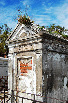 Photograph - Tomb With A Nest In New Orleans by Julie VanDore