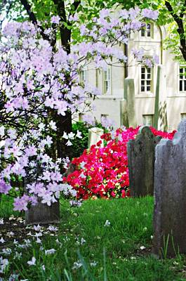 Photograph - Tombstones In Spring by Sharon Popek