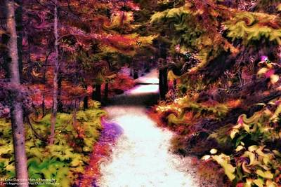 Photograph - Toms Path by Michelle and John Ressler