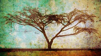 Tonal Curve Print by Brett Pfister