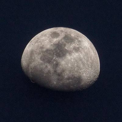 Follow Photograph - Tonight's Gibbous Moon #moon #night by Brian Governale