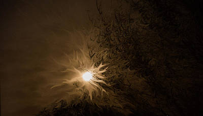 Photograph - Tonight's Moon by Bonnie Leigh Delar