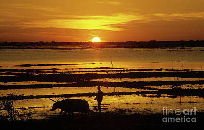 Sillouette Photograph - Tonle Sap Sunrise 01 by Rick Piper Photography